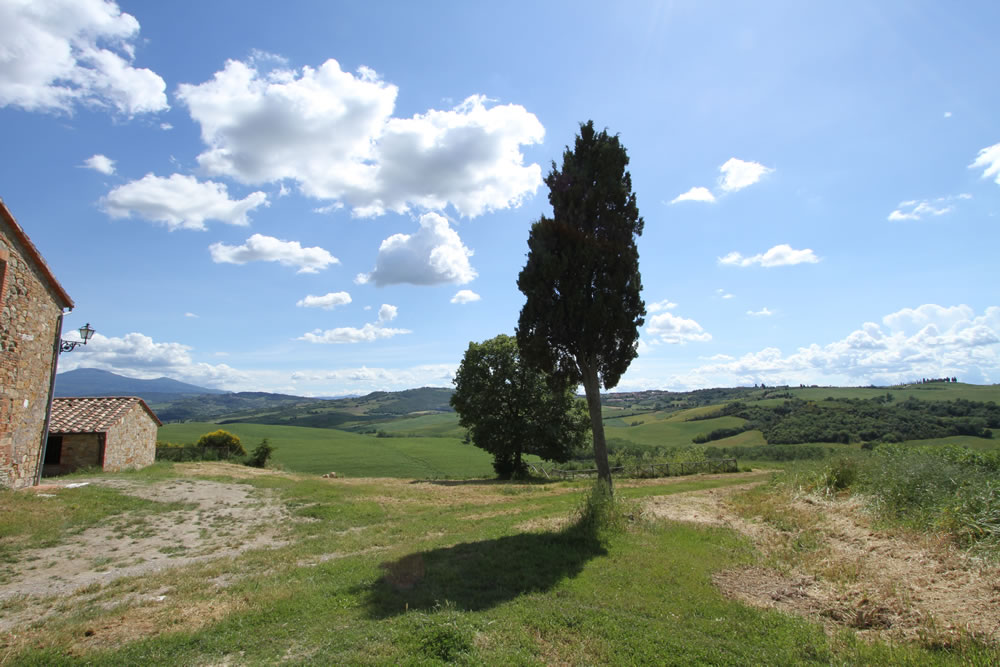 Detail of Tuscan Countryside 4