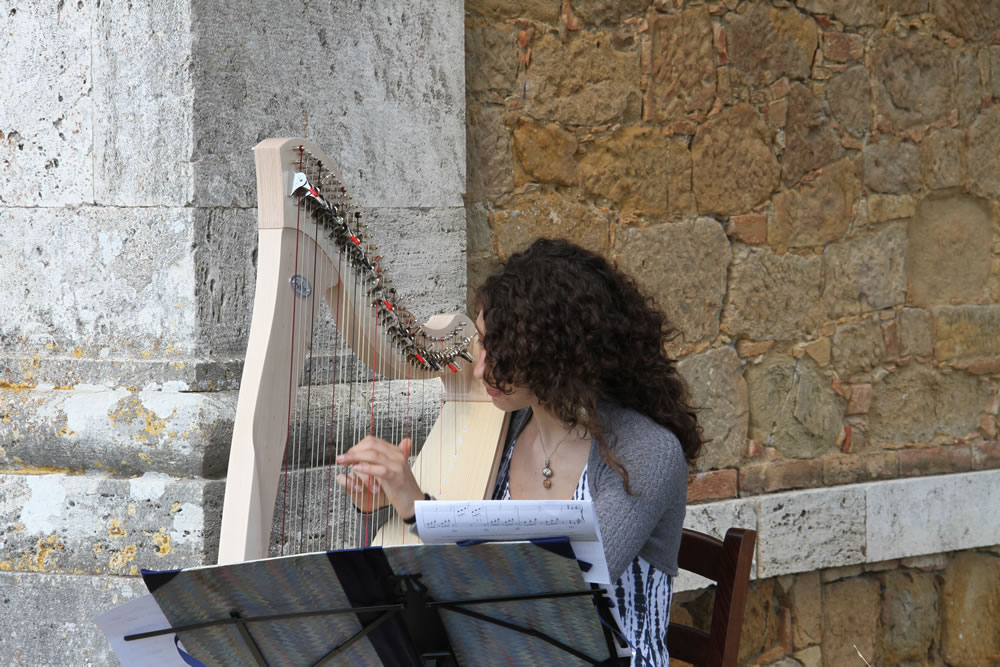 Harpist 5 for Wedding Proposal in Tuscan Countryside